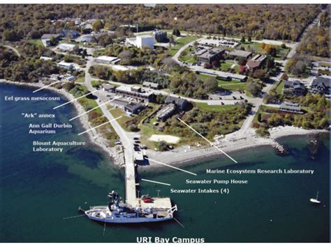 1 800 Carpet by Uri Ranked Third Most Beautiful Coastal Campus In