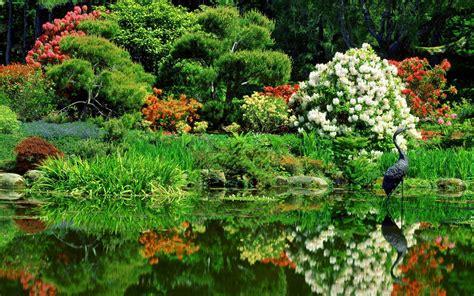 壁纸1440×900俄勒冈 海滨领地州立公园日式花园壁纸壁纸,地球瑰宝大尺寸自然风景壁纸精选 二壁纸图片-风景壁纸 ...