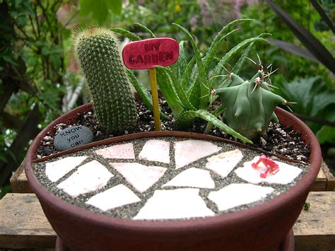 small outside cactus garden ideas photograph miniature cac