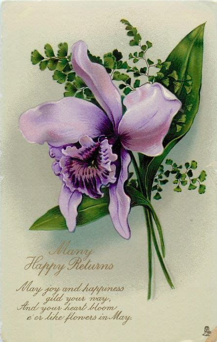 happy returns orchid facing left flower art
