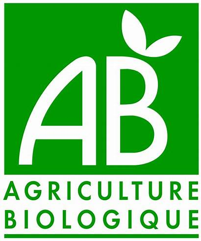 Agriculture Biologique Svg Wikimedia Commons Wikipedia