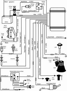Clifford Alarm Wiring Diagram