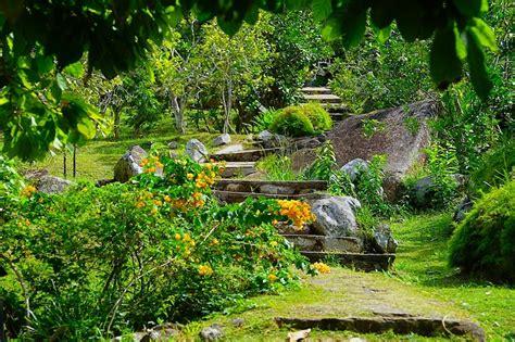 Jardin De Roi by Le Jardin Du Roi Pflanzen Und Gew 252 Rzgarten Mahe