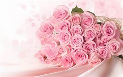 Rose Pink Wallpapers