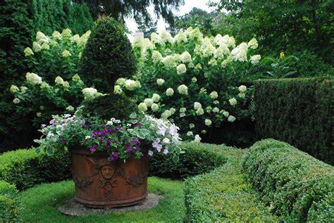 hydrangea garden design designing with hydrangeas dirt simple