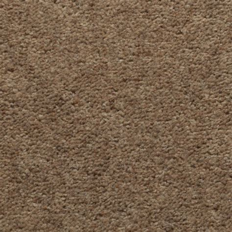 Light Brown Carpet by Light Brown Ecarpets Save 163 163 163 S On Light Brown Today