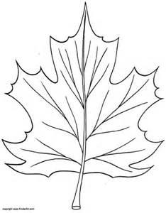 kitchen bulletin board ideas maple leaf coloring page kinderart