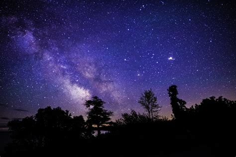 Milky Way Above Trees And Sand Dunes Image Free Stock
