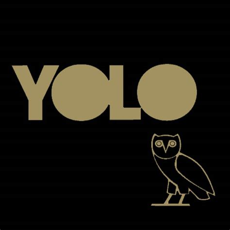 "Jay quan, mai son lam, cuong seven и др. Drake's ""YOLO"" Motto Added to the Oxford English Dictionary"