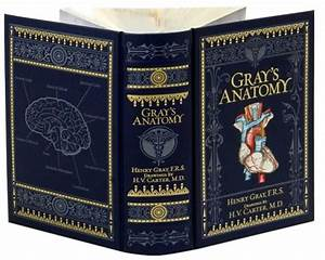 Gray's Anatomy (Barnes & Noble Collectible Editions) by ...