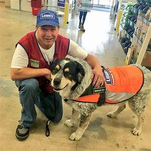 two for one deal lowe39s hires regina man and his service With lowes hires service dog