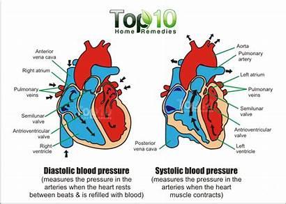 Pressure Blood Lower Reading Remedies Systolic Diastolic