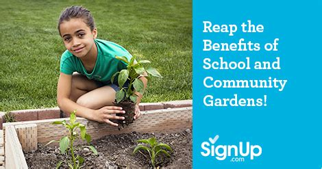 benefits of community gardens reap the benefits of school and community gardens