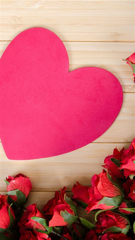 stock images love image heart rose flowers  stock