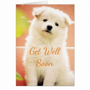Cute Get Well Soon Greeting Cards | Zazzle