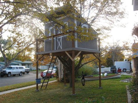 Montana Boys Build Spectacular Treehouse, But Can It Be