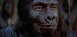 Archives Of The Apes: General Aldo