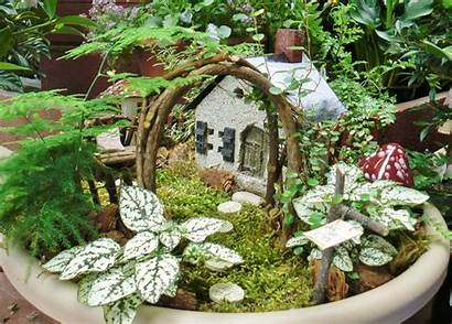 Fairy Garden Gardens Container Mini Outdoor Gardening