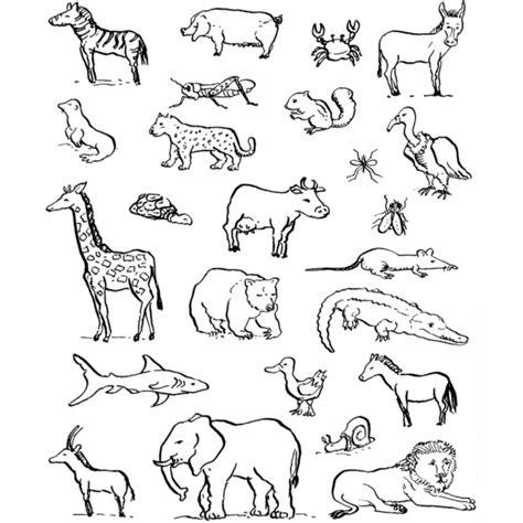 disegni per bambini da colorare di animali disegno di animali da colorare per bambini