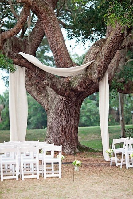 ceremony under the trees decor ideas wedding ceremony