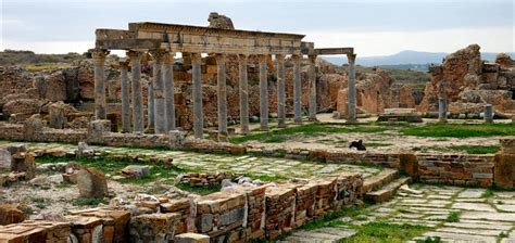 Original Sin And Ephesus Carthage's Influence On The East