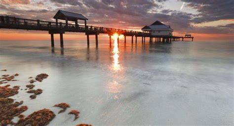 clearwater guide fodors travel