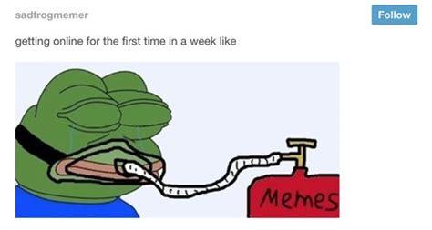 Rare Memes - rare memes pepe image memes at relatably com