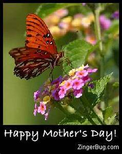 Mother's Day Butterfly Glitter Graphic, Greeting, Comment ...
