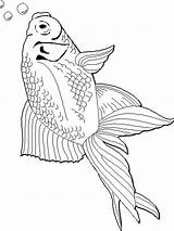 Goldfish Coloring Pages Fish Printable Print Recommended Goldfishes Getcolorings sketch template
