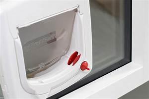 Katzenklappe In Fenster : katzenklappe einbauen katzent re in fenster einbauen ~ Orissabook.com Haus und Dekorationen
