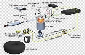 Car Vialle Liquefied Petroleum Gas Autogas Wiring Diagram