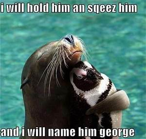 Funny Animal Pictures - 60 Pics