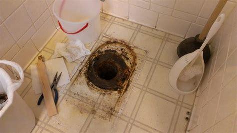 plumbing       toilet drain pipe