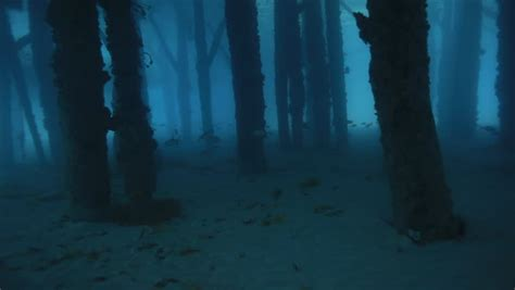 dark  spooky pillars beneath stock footage video