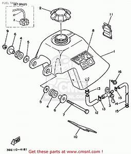 2001 Raptor 660 Wiring Diagram