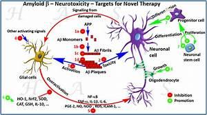 Neuroprotection, Alzheimer's, parkinson's, consultancy ...