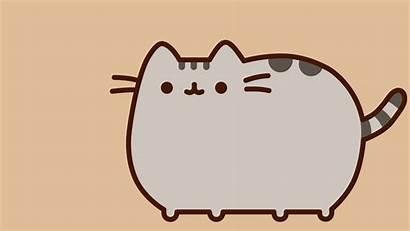 Pusheen Cat Fan