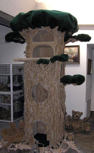images  awesome kitty mansion  pinterest