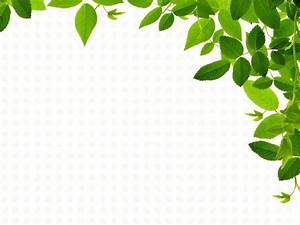 Real Leaves Backgrounds - Nature Templates - Free PPT