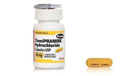 clomipramine treating ocd  spraying  dogs  cats