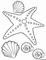 Starfish Coloring Printable Cool2bkids sketch template