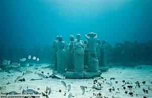 Image Gallery submerged