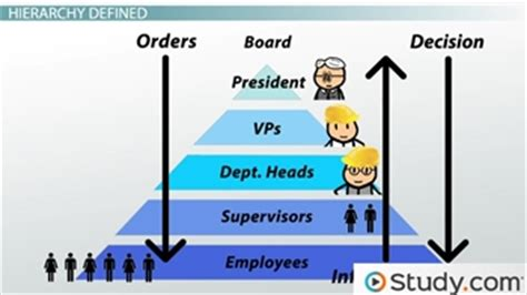 organizational chart  hierarchy definition examples