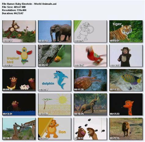dvd  baby world animals  gioi dong vat song lam