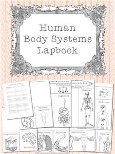 science le corps humain images human body unit