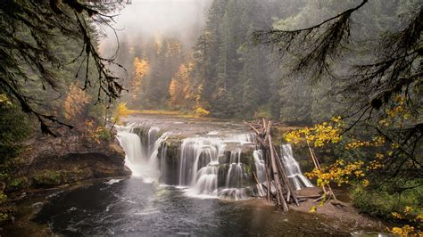 Download Wallpaper 1920x1080 Forest, River, Waterfall