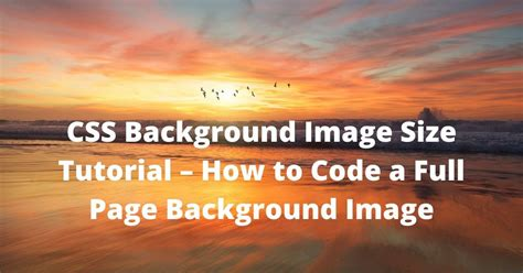 css background image size tutorial   code  full