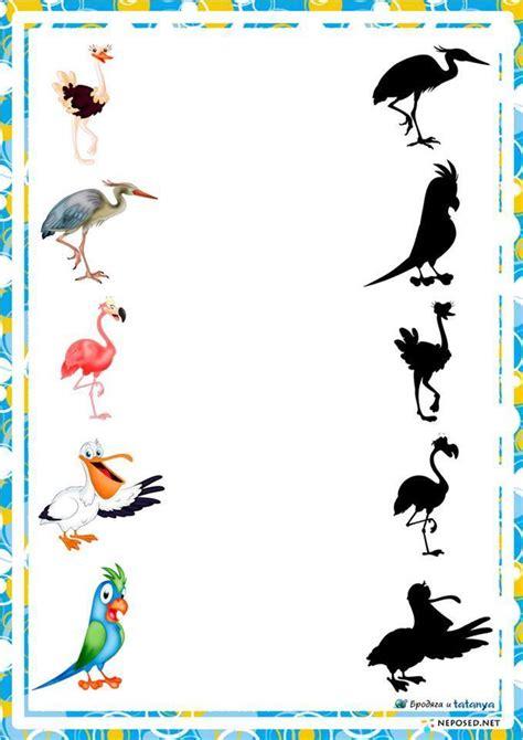 preschool activities shadow birds 171 preschool and homeschool 634 | preschool activities shadow birds