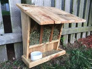 The Wild Rabbit Feeder Projects for Pets Pinterest