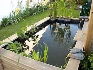 Bassin De Jardin Pour Poisson : best 25 bassin poisson exterieur ideas on pinterest ~ Premium-room.com Idées de Décoration